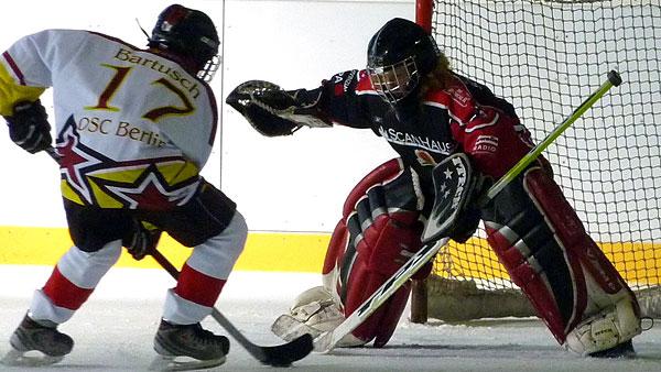 Info Eishockey, einfach auf das Bild klicken